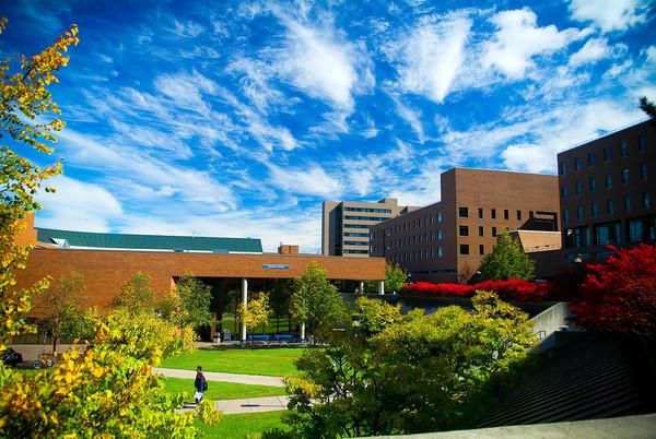 纽约州立大学布法罗分校世界排名.jpg